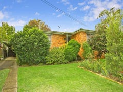 59 Peachtree Avenue, Constitution Hill, NSW 2145