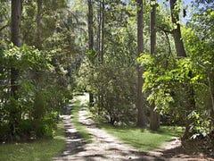 1280 Tyalgum Road, Tyalgum, NSW 2484