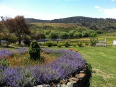 2158 Hollow Tree Road, Hollow Tree, Tas 7140