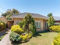 17 McLachlan Avenue, Glenelg North, SA 5045