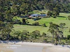 594 Rifle Range Road, Sandford, Tas 7020