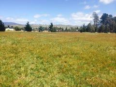 43 Glen Lea Road, Pontville, Tas 7030