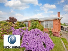 314 Hobart Road, Youngtown, Tas 7249