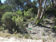 Lot 193, Island Beach Road, Island Beach, SA 5222