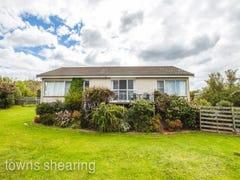 2 Taree Crescent, Gravelly Beach, Tas 7276