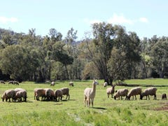 Lot 1 Northam-Toodyay Road, Toodyay, WA 6566