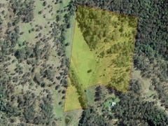 Lot 21 Frickers Road, Nymboida, NSW 2460