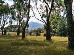 Lot 1, 130 Ferrier Road, New Gisborne, Vic 3438