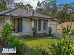 42 Walkers Road, Everton Hills, Qld 4053