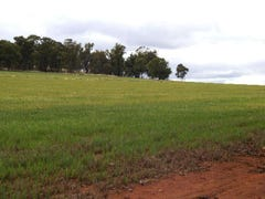 NEWELL HWY, Narrandera, NSW 2700