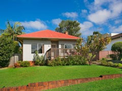 17 Bassett Street, Fairy Meadow, NSW 2519