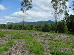 Lot 563 Cabbage Palm Lane, Bonville, NSW 2441