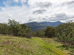 Lot 1/90 Poulters Road, New Norfolk, Tas 7140