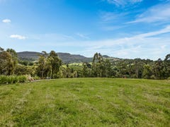 Lot 896, 64 William James Drive, Mount Kembla, NSW 2526