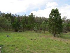 Lot 5 / 1815 Kangarooby Road, Gooloogong, NSW 2805