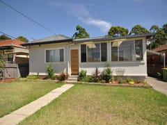 149 Fowler Road, Merrylands, NSW 2160