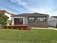 20 Coane Street, Warners Bay, NSW 2282