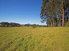 Lot 11 Devitts Lane, Meroo Meadow, NSW 2540