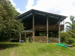 3 Ronald Road Forest Creek, Daintree, Qld 4873
