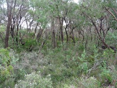 Lot 69, Native Dog Beach Road, Bremer Bay, WA 6338