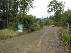 Lot 1 Off Mount Barrow Road, Nunamara, Tas 7259