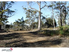 Lot 12 /7308 Tasman Highway, Orford, Tas 7190