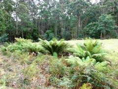 Lot 1, L1 and L3 Riflerange Road, Nubeena, Tas 7184