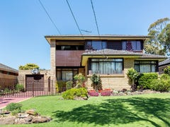 53 Baxter Road, Bass Hill, NSW 2197