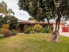 6 Judith Place, Grange, SA 5022