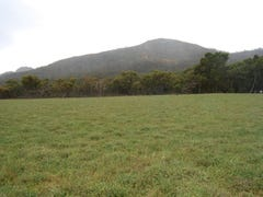 Lot 37 Millinup Road, Porongurup, WA 6324