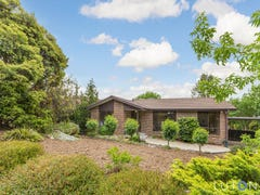16 Louis Loder Street, Theodore, ACT 2905