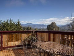 301 She Oak Road, Judbury, Tas 7109