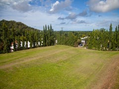 Lot 11 Knight Road, Smithfield, Qld 4878