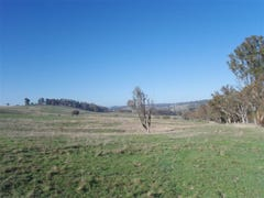 Lot 2 Peelwood Rd, Laggan, NSW 2583