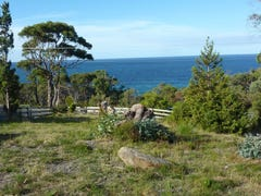 116 Blowhole Road, Eaglehawk Neck, Tas 7179