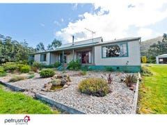 514 Cygnet Coast Road, Petcheys Bay, Tas 7109