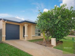 34 Riverbend Drive, Douglas, Qld 4814