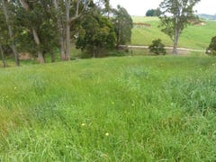 Lot A Lottah Road, Natone, Tas 7321