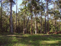 Lot 36, 50 First Ridge Road, Smiths Lake, NSW 2428