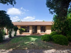 3 Ellwood Avenue, Para Vista, SA 5093