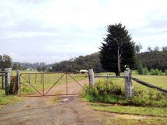1384 Bridgenorth Road, Rosevale, Tas 7292
