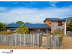 557 Boyer Road, Dromedary, Tas 7030