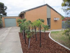 4 Alnwick Court, Noarlunga Downs, SA 5168