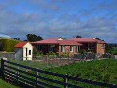 698 Ridgley Highway, Ridgley, Tas 7321