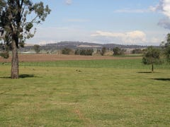 Elgin - New England Highway, Muswellbrook, NSW 2333