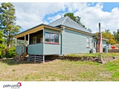 116 Lower Swamp Road, Lachlan, Tas 7140