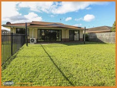 14 Ferngrove Avenue, Upper Coomera, Qld 4209