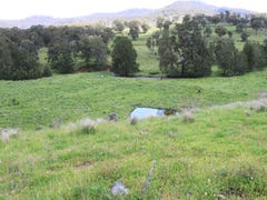 1 Ups and Downs, Timor, NSW 2338