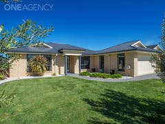 16 Savoy Place, Youngtown, Tas 7249