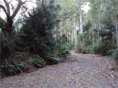 Lot 1, Lorinna Road, Lorinna, Tas 7306